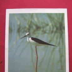 Coleccionismo de carteles: LAMINA PUBLICIDAD DE LOS LABORATORIOS ROCHE . Lote 36232879