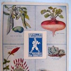 Colecionismo de cartazes: SEMILLAS SELECCIONADAS J.MOCOROA, SAN SEBASTIAN. 1935. Lote 219196087