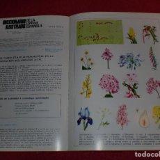 Coleccionismo de carteles: SEPARATA DICCIONARIO ILUSTRADO - AÑOS '70: INFLORESCENCIA & INFRUTESCENCIA. Lote 101284627