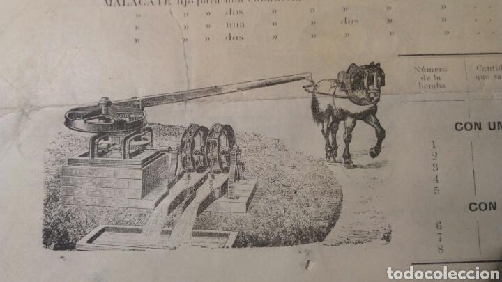 Coleccionismo de carteles: Alicante Tomás Aznar é Hijos - Foto 6 - 109114047