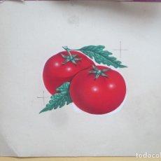Collectionnisme d'affiches: ETIQUETA ORIGINAL, PINTADA A MANO, TOMATES, PUBLICIDAD, E118. Lote 182498001