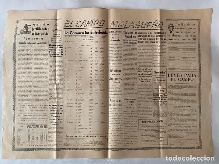 HOJA MURAL CAMARA OFICIAL SINDICAL AGRICOLA EL CAMPO MALAGUEÑO , 1955 (Coleccionismo - Carteles Pequeño Formato)