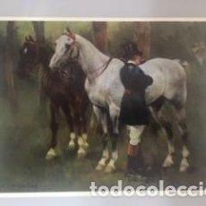 Coleccionismo de carteles: LÁMINA. Lote 218314030
