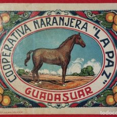 Coleccionismo de carteles: CARTEL ITO ETIQUETA NARANJAS LA PAZ CABALLO COOPERATIVA NARANJERA GUADASUAR VALENCIA ORIGINAL K4. Lote 255598215