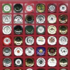 Coleccionismo de cava: ESTUCHE CON 48 PLACAS DE CAVA DIFERENTES, EN EXCELENTE ESTADO. Lote 26386179