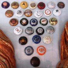 Coleccionismo de cava: COLECCIÓN DE 28 PLACAS DE CAVA, CHAMPÁN. Lote 52709540