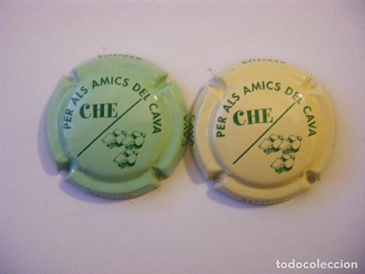 2 PLACAS DE CAVA XEPITUS (Coleccionismo - Botellas y Bebidas - Cava)