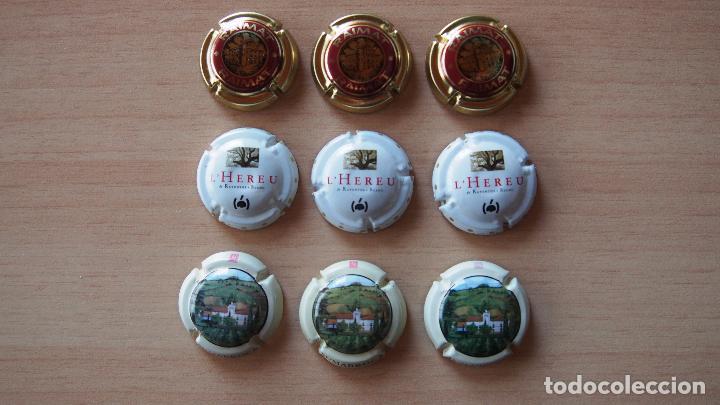 LOTE 9 PLACAS CAVA SUMARROCA (3), RAVENTOS L'HEREU (3), RAIMAT (3). PLACA CHAPA (Coleccionismo - Botellas y Bebidas - Cava)