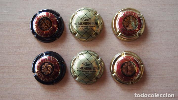 LOTE 6 PLACAS CAVA. JAUME GIRÓ (2), RAIMAT (2) Y LLOPART (2). VER FOTOGRAFIAS PLACA CHAPA (Coleccionismo - Botellas y Bebidas - Cava)