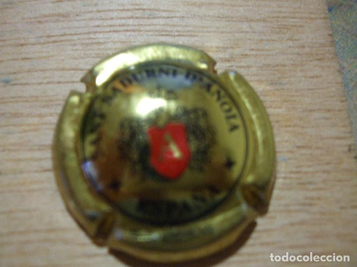 1 PLACA DE CAVA ARESTEL SANT SADURNI D'ANOIA - PLACAS CHAPA CHAPAS (Coleccionismo - Botellas y Bebidas - Cava)