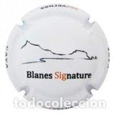 Coleccionismo de cava: PLACA DE CAVA SES VERNES . Lote 95620747