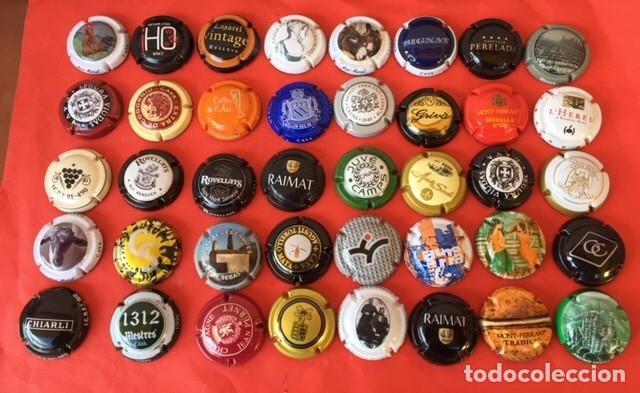 LOTE CUARENTA PLACAS DE CAVA TODAS DIFERENTES (Coleccionismo - Botellas y Bebidas - Cava)