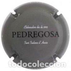 Coleccionismo de cava: PLACA DE CAVA - CASTELO DE PEDREGOSA 138948. Lote 105468555