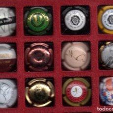 Coleccionismo de cava: 12 CHAPAS DE CAVA VARIAS MARCAS ESPAÑA. Lote 109382767