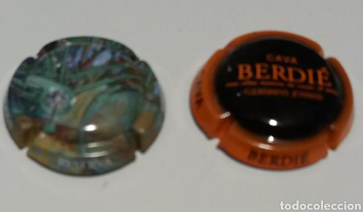 2 PLACAS CAVA PEDREGOSA Y BERDIÉR (Coleccionismo - Botellas y Bebidas - Cava)