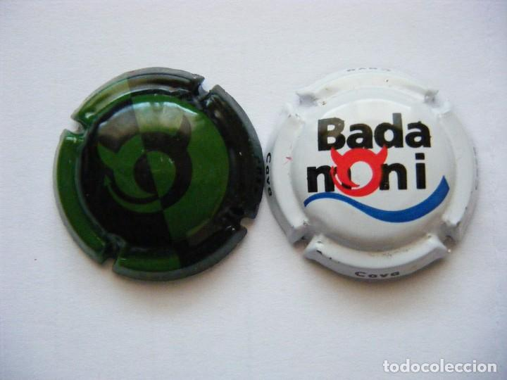 2 PLACAS DE CAVA BADAMONI (Coleccionismo - Botellas y Bebidas - Cava)