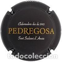 PLACA DE CAVA - CASTELO DE PEDREGOSA - 153733 (Coleccionismo - Botellas y Bebidas - Cava)