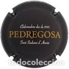 Coleccionismo de cava: PLACA DE CAVA - CASTELO DE PEDREGOSA - 153733. Lote 118682035