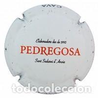 PLACA DE CAVA - CASTELO DE PEDREGOSA - 143251 (Coleccionismo - Botellas y Bebidas - Cava)