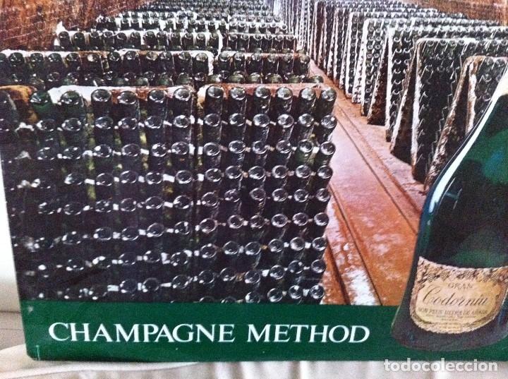 Coleccionismo de cava: Cartel Metálico Cavas Codorniu. Champagne Method. Original - Foto 3 - 116219643