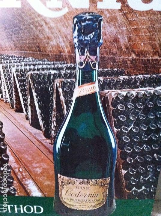 Coleccionismo de cava: Cartel Metálico Cavas Codorniu. Champagne Method. Original - Foto 4 - 116219643