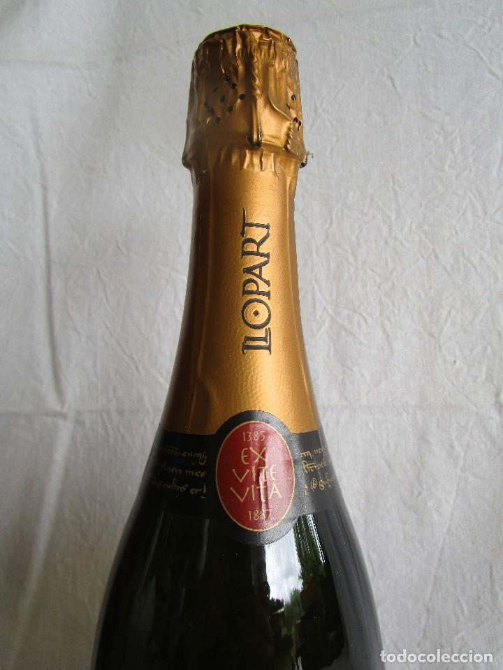 Coleccionismo de cava: botella cava llopart gran reserva vintage 2004 - Foto 5 - 129387039
