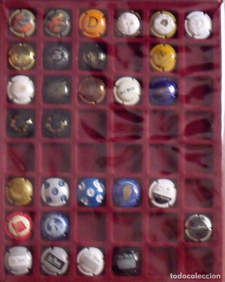 Coleccionismo de cava: ÁLBUM LOTE O COLECCIÓN DE 191 PLACAS DIFERENTES DE CAVA. LAS MARCAS EMPIEZAN POR LA A, B, D Y F. - Foto 3 - 131617882