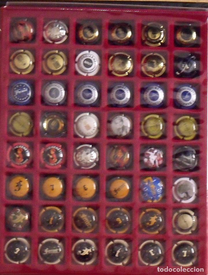Coleccionismo de cava: ÁLBUM LOTE O COLECCIÓN DE 191 PLACAS DIFERENTES DE CAVA. LAS MARCAS EMPIEZAN POR LA A, B, D Y F. - Foto 4 - 131617882