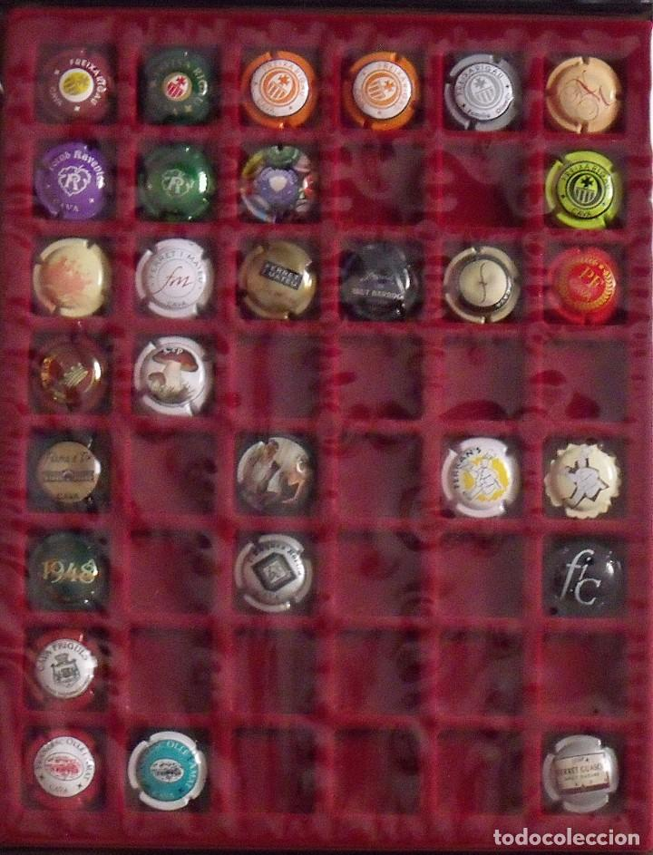 Coleccionismo de cava: ÁLBUM LOTE O COLECCIÓN DE 191 PLACAS DIFERENTES DE CAVA. LAS MARCAS EMPIEZAN POR LA A, B, D Y F. - Foto 5 - 131617882