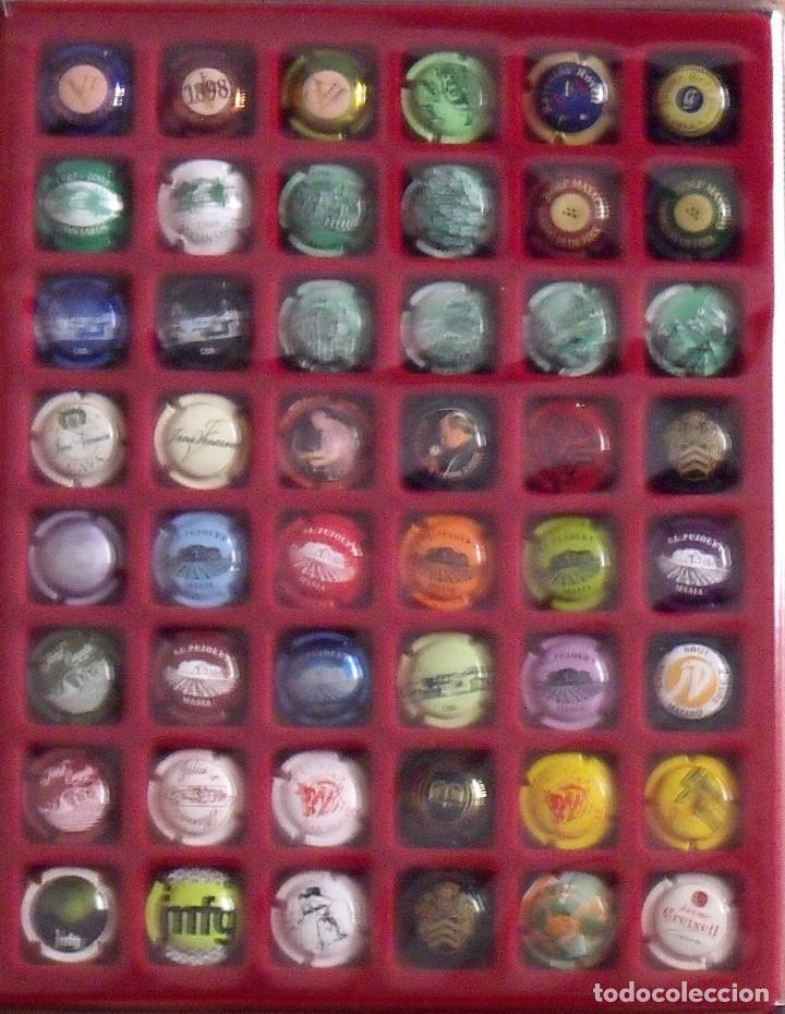 Coleccionismo de cava: ÁLBUM LOTE O COLECCIÓN DE 238 PLACAS DIFERENTES DE CAVA. LAS MARCAS EMPIEZAN POR LA G, H, I, J Y L, - Foto 2 - 131618394
