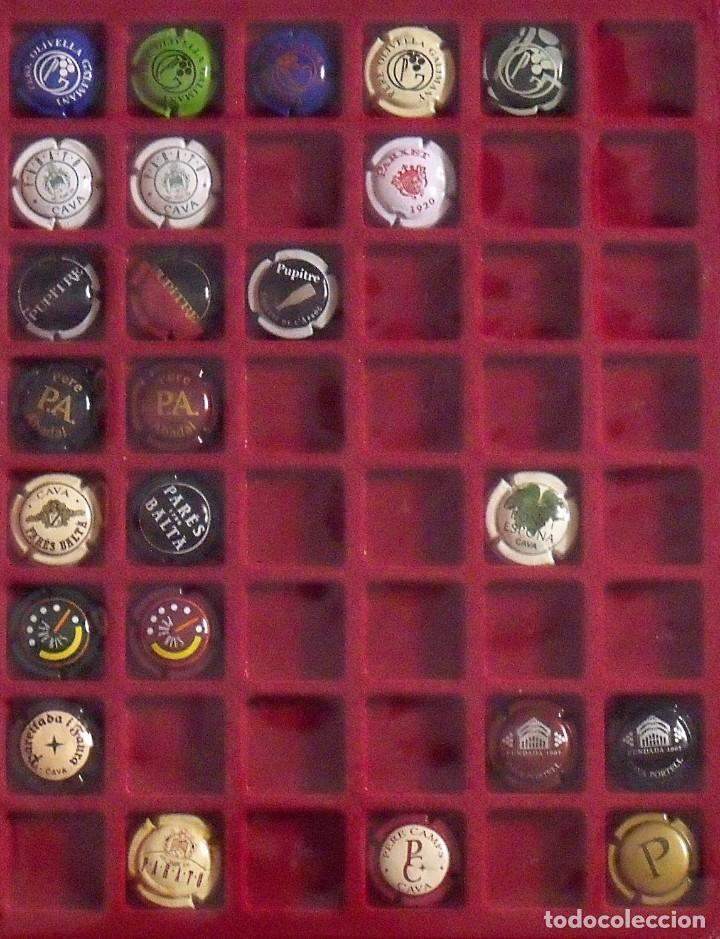 Coleccionismo de cava: ÁLBUM LOTE O COLECCIÓN DE 134 PLACAS DIFERENTES DE CAVA. LAS MARCAS EMPIEZAN POR LA LL, N, O Y P. - Foto 5 - 131618802