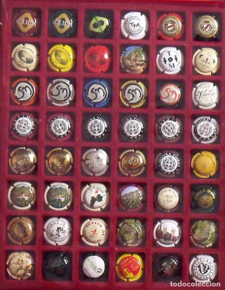 Coleccionismo de cava: ÁLBUM LOTE O COLECCIÓN DE 230 PLACAS DIFERENTES DE CAVA. LAS MARCAS EMPIEZAN POR LA P, R, S, T Y V - Foto 4 - 131619258
