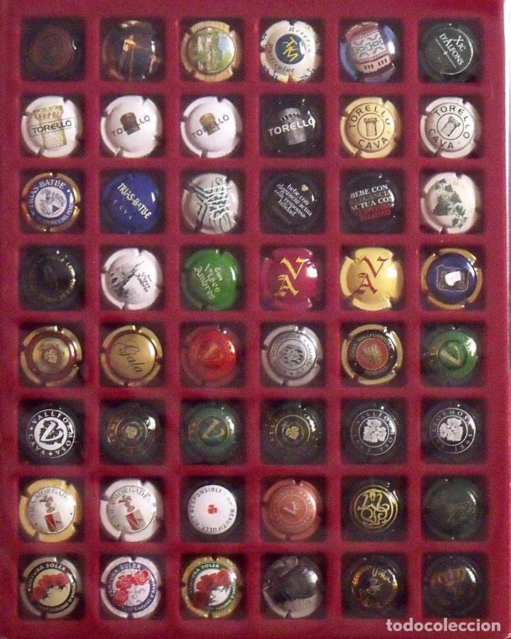 Coleccionismo de cava: ÁLBUM LOTE O COLECCIÓN DE 230 PLACAS DIFERENTES DE CAVA. LAS MARCAS EMPIEZAN POR LA P, R, S, T Y V - Foto 5 - 131619258