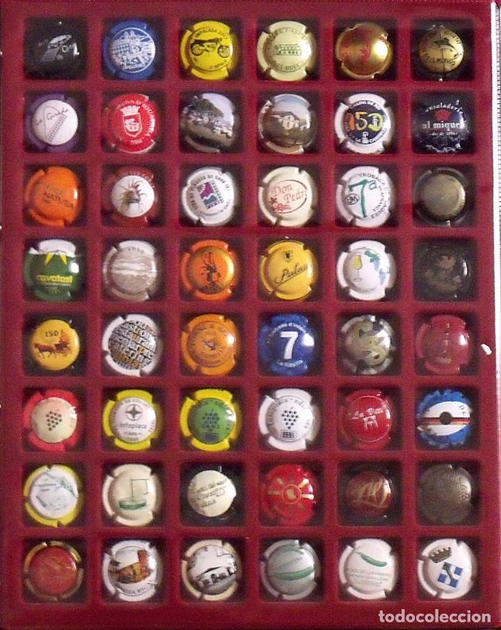 Coleccionismo de cava: ÁLBUM LOTE O COLECCIÓN DE 314 PLACAS DIFERENTES DE CAVA, PIRULAS Y CHAMPAGNE. - Foto 2 - 131621614