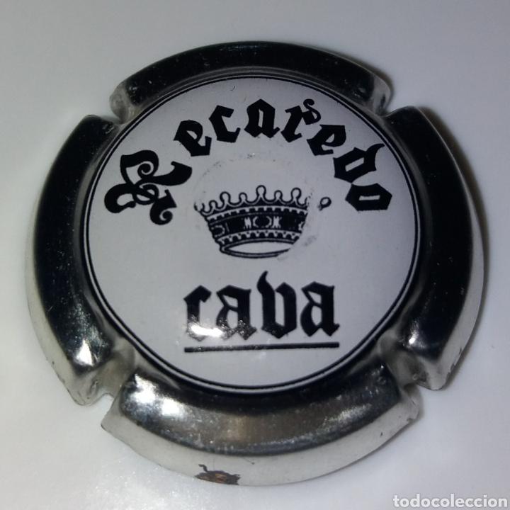 PLACA CAVA RECADERO (Coleccionismo - Botellas y Bebidas - Cava)