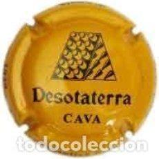 Coleccionismo de cava: PLACA DE CAVA - DESOTATERRA - Nº VIADER 5243. Lote 134256826