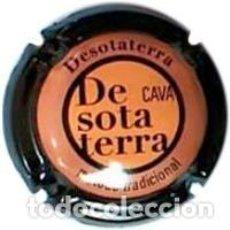 Coleccionismo de cava: PLACA DE CAVA - DESOTATERRA - Nº VIADER 15068. Lote 134256878