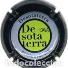 Coleccionismo de cava: PLACA DE CAVA - DESOTATERRA - Nº VIADER 18469. Lote 134256918
