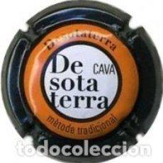 Coleccionismo de cava: PLACA DE CAVA - DESOTATERRA - Nº VIADER 24154. Lote 134256966