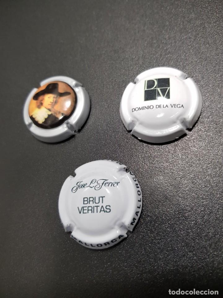 29-LOTE 3 CHAPAS CAVA (Coleccionismo - Botellas y Bebidas - Cava)