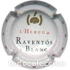 Coleccionismo de cava: PLACA DE CAVA - RAVENTOS I BLANC - Nº VIADER 2637. Lote 246540470
