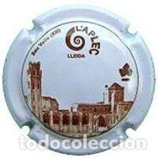 Coleccionismo de cava: PLACA DE CAVA - RABETLLAT Y VIDAL - Nº VIADER 32407. Lote 156554316
