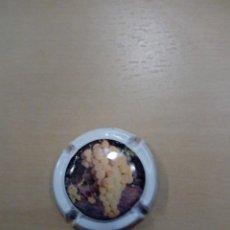 Coleccionismo de cava: PLACA DE CAVA. Lote 151430514