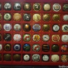 Coleccionismo de cava: EXPOSITOR VITRINA CON 48 CHAPAS DE CAVA (VER DETALLE EN FOTOGRAFÍAS). Lote 153884684