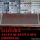 Coleccionismo de cava: LOTE COLECCIÓN DE 144 PLACAS DE CAVA TODAS DISTINTAS CON HOJAS Y ALBUM Y 4 HOJAS VER FOTOGRAFIAS. Lote 68038273