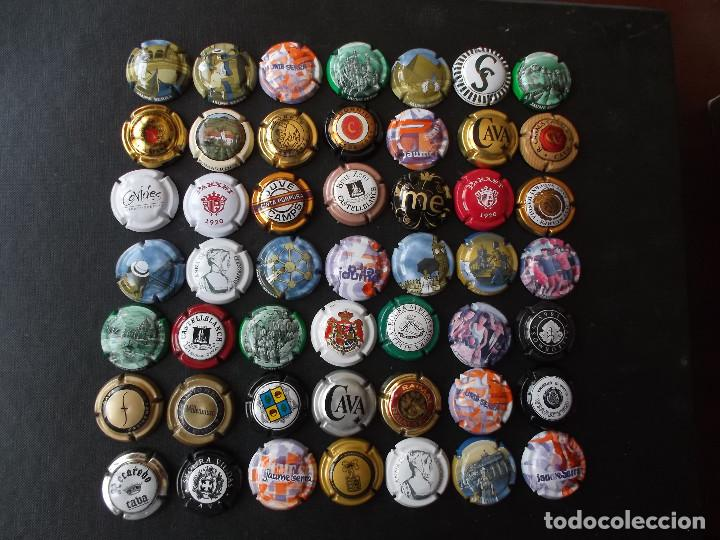 CONJUNTO DE 49 CHAPAS DE CAVA DIVERSAS EPOCAS Y VARIEDAD DE MARCAS VER FOTOS LOTE N 2 (Coleccionismo - Botellas y Bebidas - Cava)