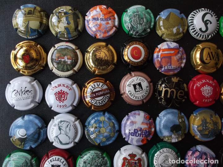 Coleccionismo de cava: conjunto de 49 chapas de cava diversas epocas y variedad de marcas ver fotos lote n 2 - Foto 2 - 167112172