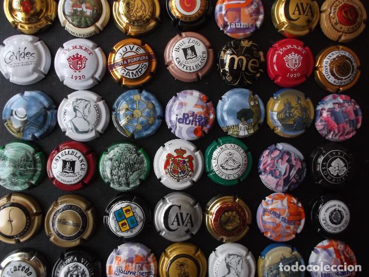 Coleccionismo de cava: conjunto de 49 chapas de cava diversas epocas y variedad de marcas ver fotos lote n 2 - Foto 7 - 167112172