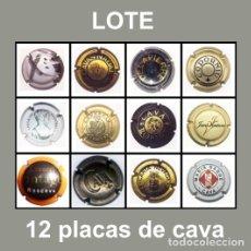 Coleccionismo de cava: LOTE DE 12 PLACAS DE CAVA. Lote 32828189