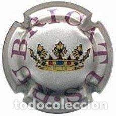 Coleccionismo de cava: CHAPA / PLACA DE CAVA RUBRICATUS ROSA. Lote 172281424